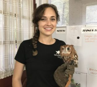 Education staffer Heather Natola with Penny, an Eastern Screech Owl.